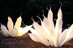 Chihuly blåst exponeringsglas royaltyfria foton