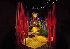 Chihuly exponeringsglas, Seattle, Washington Royaltyfria Bilder