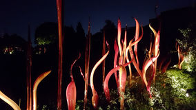 Chihuly Glass Sculpture at Night Stock Photography