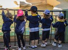Chiildren bij de dierentuin stock foto