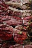 Chiili vermelho secado fotografia de stock royalty free