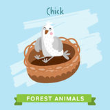 Chik Vector, forest animals. Royalty Free Stock Photography