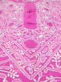 chikan вышивка Стоковое фото RF