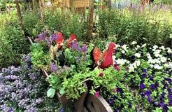Chiken和美丽的植物在室内花园里在新加坡 免版税库存照片