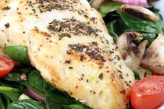 Chiken breast and salad Stock Image