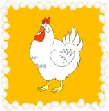 Chiken with eggs Stock Image