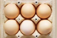 Chiken eggs Royalty Free Stock Photos