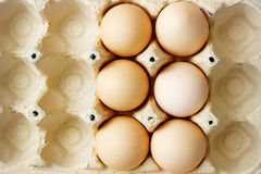 Chiken eggs Royalty Free Stock Photography