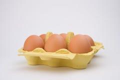 Chiken Eggs Pack Stock Photo