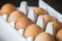 Chiken Eggs packed in a box. Stock Images