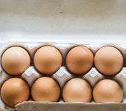 Chiken Eggs packed in a box. Royalty Free Stock Image