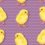 Chiken pattern Stock Images