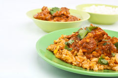 Chiken Tikka Masala Curry with Fried Rice Royalty Free Stock Images
