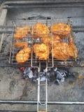 Chiken vingar och kebaber och på BBQ royaltyfria bilder