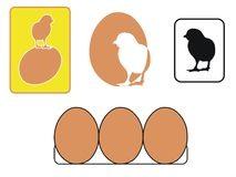 Chikens and eggs Royalty Free Stock Photo