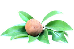 Chikoo fruit Royalty Free Stock Photos