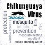 Chikungunya病毒,蚊子,词云彩 免版税库存照片