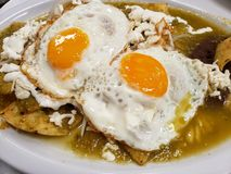 Chilaquiles dish with fried egg for lunch, traditional mexican food. Chilaquiles dish fried egg lunch traditional mexican food eggs green sauce typical meal royalty free stock photo