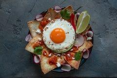 Chilaquiles Meksykański tortilla z pomidorowym salsa, kurczakiem i jajkiem w górę talerza, dalej horyzontalny widok od above obraz stock