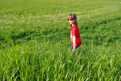 Child. The happy girl walks on a green meadow in the summer Stock Image