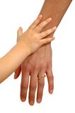 Child and adult hands Royalty Free Stock Image