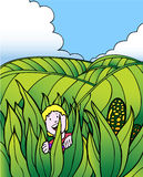 Child Adventure: Corn Field Farm. Young child stands in a field of corn. Rolling hills of green field are in the background under a blue sky Royalty Free Stock Photo