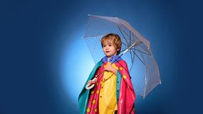 Child advertise your product and services. Cheerful boy in raincoat with colorful umbrella. Autumn concept. Cute little royalty free stock photo