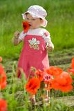 Child amongst red flowers Stock Photos
