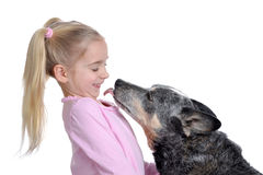 Child And Dog Happiness Royalty Free Stock Images