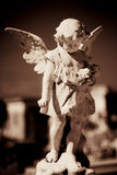 Child angel statue in a cemetery Royalty Free Stock Images