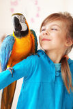 Child with ara parrot. Portrait of a kid girl with her domestic ara parrot Royalty Free Stock Image