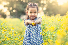 Child asian little girl holding flower in her hand in the garden Royalty Free Stock Photography