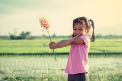 Child asian little girl holding grass flower in her hand Royalty Free Stock Images