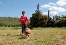 Child and australian dog stock photography