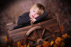 Child in Autumn. Child posing in miniature ox cart, decorative garden theme, autumn leaves stock photography