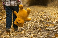 Child, Autumn, Bear, Leaves, Boy Royalty Free Stock Images