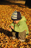 Child with autumn leaves Royalty Free Stock Photos