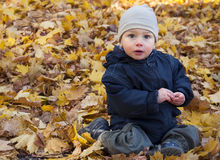 Child and autumn leaves Royalty Free Stock Photography