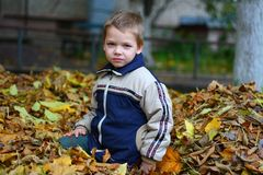 Child in autumn leaves Stock Photo