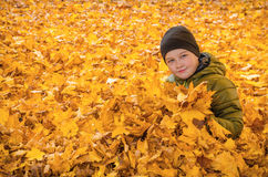 Child in autumn leaves Stock Photos