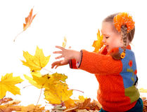 Child in autumn orange leaves. Stock Photos