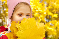 Child in autumn park. Royalty Free Stock Image