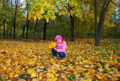 Child in autumn park Royalty Free Stock Photography