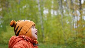 Child in autumn Park having fun playing and laughing , walking in the fresh air stock footage