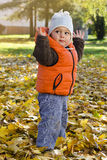 Child in autumn park Stock Images