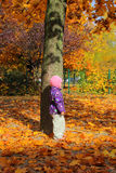 Child in the autumn park Stock Photo