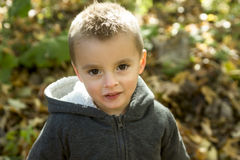 Child in autumn season Stock Photos