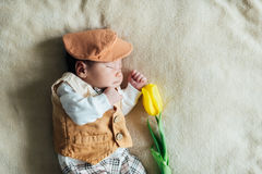 Child baby boy with tulip. Mothers day Stock Photo