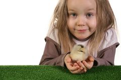 Child and baby chicken Stock Photos