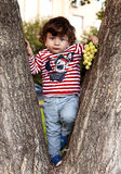 Child baby curly brunette in jeans and a T-shirt climbed a tree Royalty Free Stock Photos